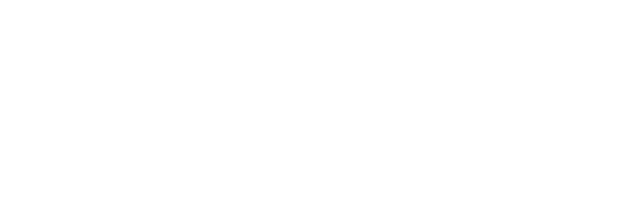 VsQ – The Visual Squirrels