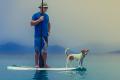 Navigation – paddling the web